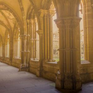 Patrimonium Monasticum